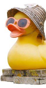 Port City Duck Race - Ducklings For Hope