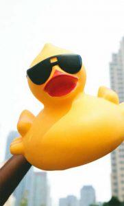 Port City Duck Race -In-kind sponsor