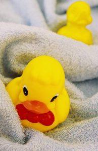 Port City Duck Race -Waddlers